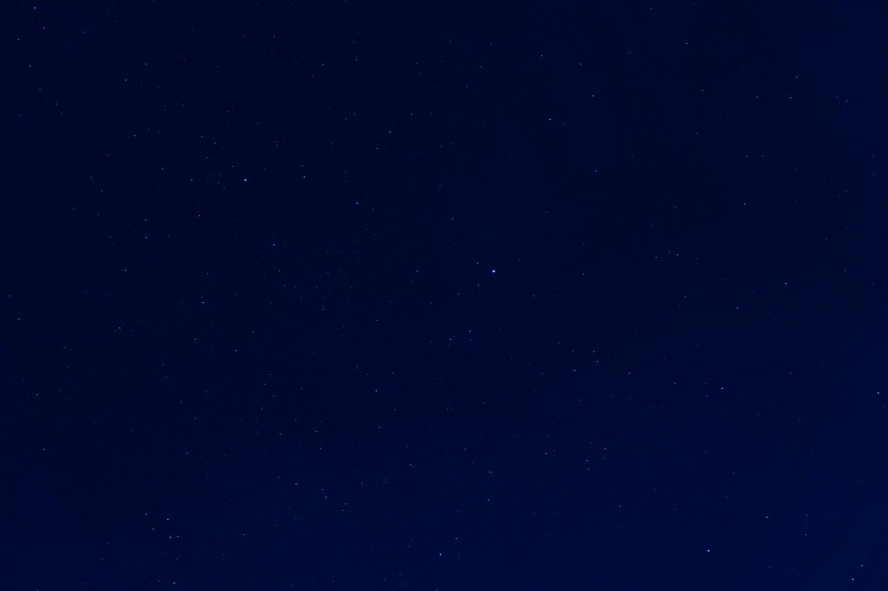 DSC01692-2.jpg