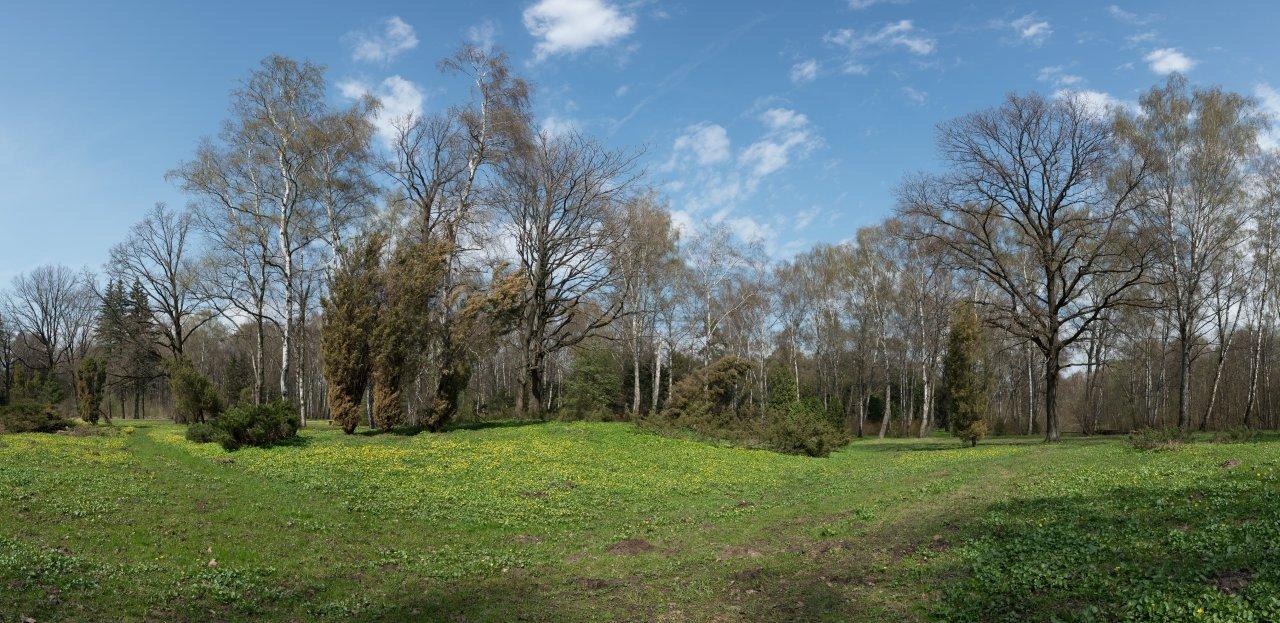 DSC05054-Панорама.jpg