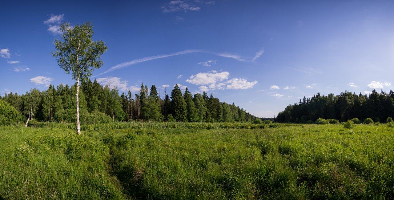 DSC05075-Панорама.jpg