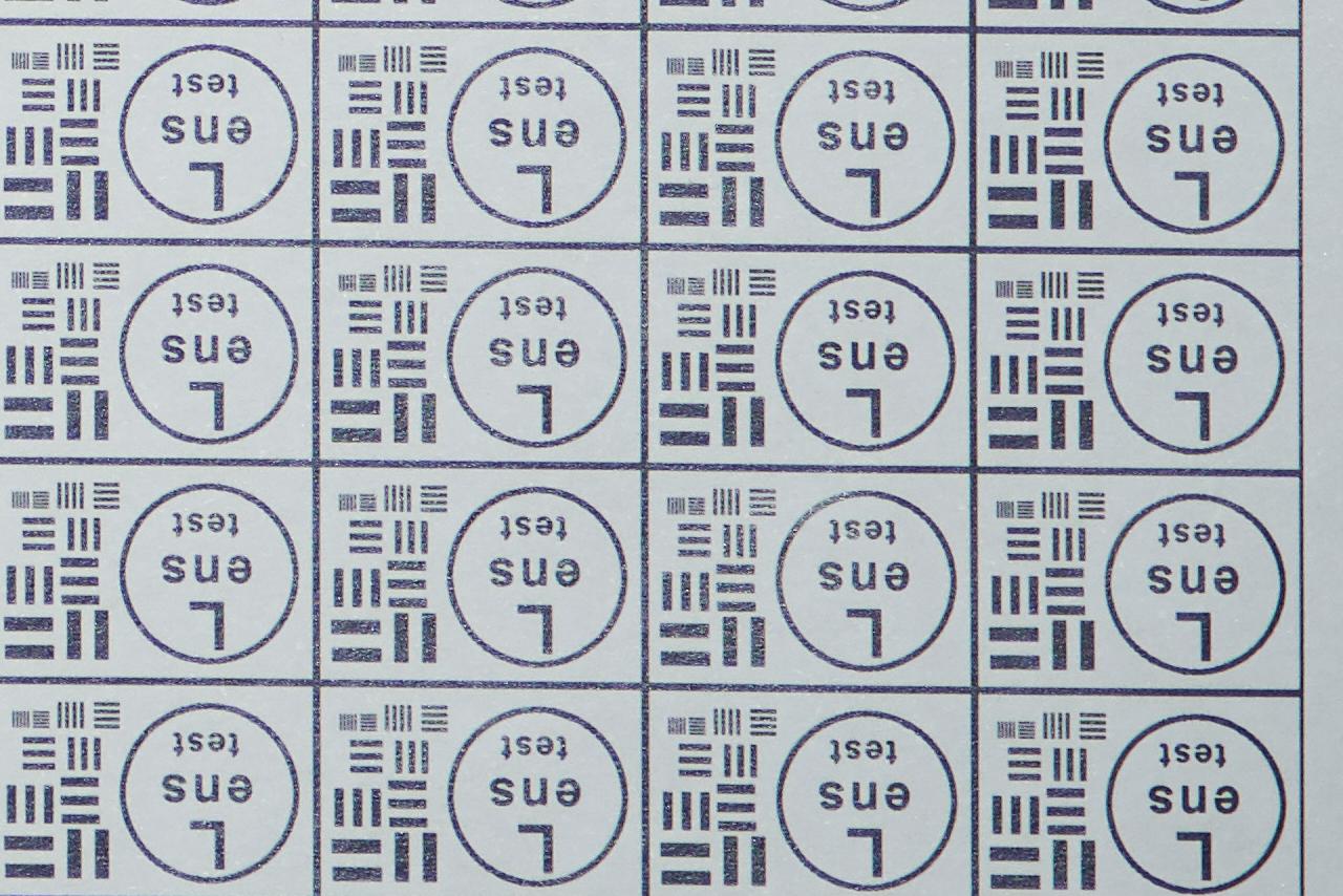 DSC05235_cr.jpg