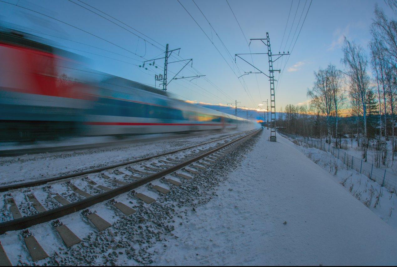DSC06158-1.jpg