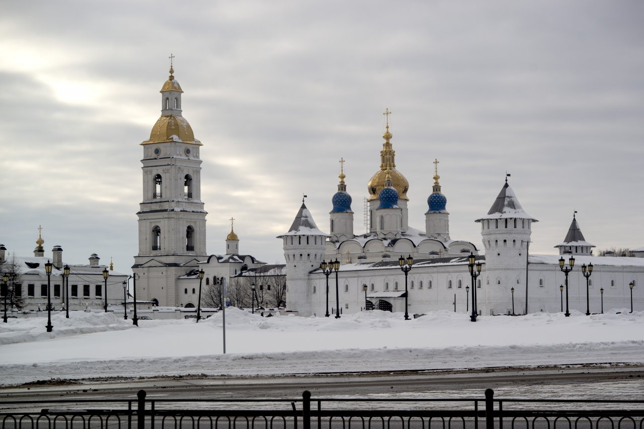 Кремль биометар.jpg
