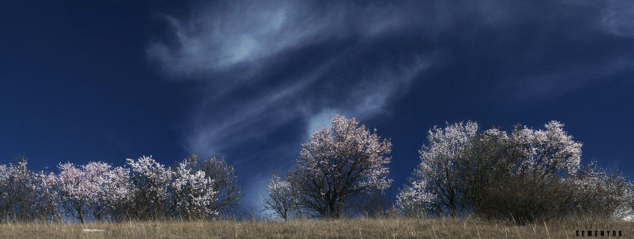 March sky Deep hallow.jpg