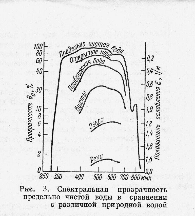 Rogov_Fig_3.jpg