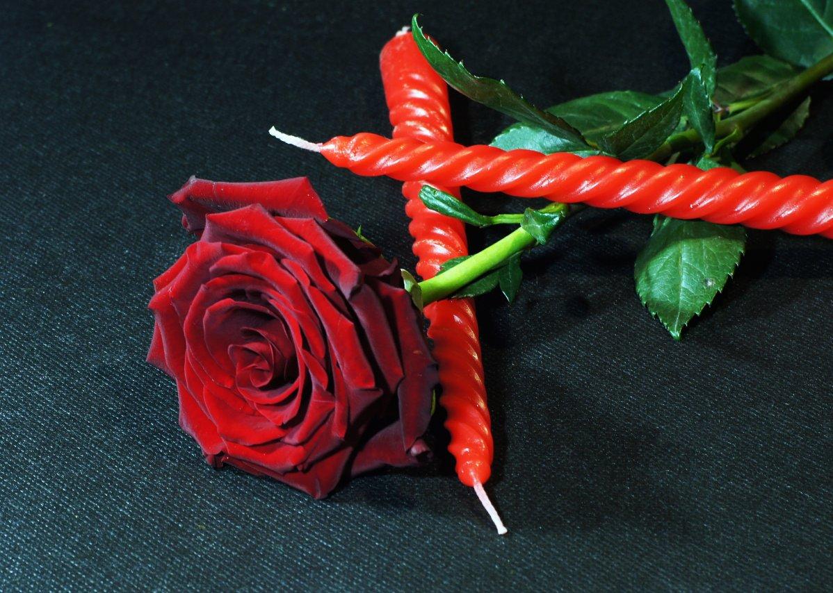 роза (5).JPG